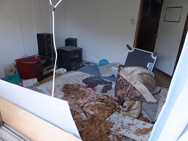 地震時、就寝していた部屋